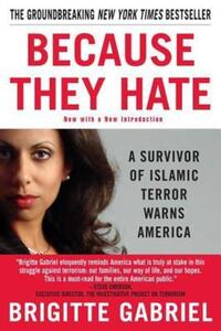 Jacket Image For: Because They Hate