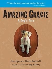 Jacket Image For: Amazing Gracie
