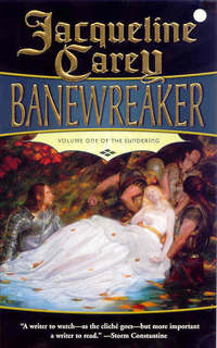Jacket image for Banewreaker