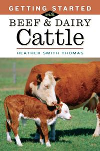 Jacket Image For: Getting Started with Beef and Dairy Cattle
