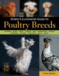 Jacket image for Storey's Illustrated Guide to Poultry Breeds