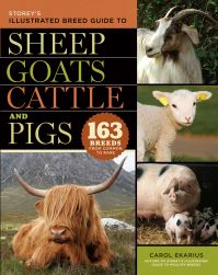 Jacket image for Storey's Illustrated Breed Guide to Sheep, Goats, Cattle and Pigs