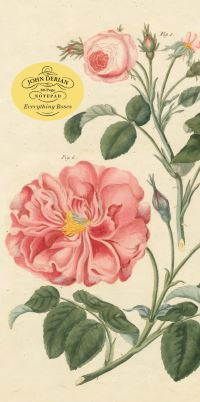 Jacket Image For: John Derian Paper Goods: Everything Roses Notepad