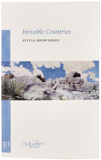 Jacket image for Invisible Countries
