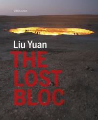Jacket Image for the Title The Lost Bloc