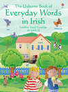 The Usborne book of everyday words in Irish