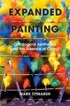 Expanded painting ontological aesthetics and the essence of colour