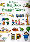 The Usborne big book of Spanish words