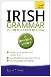 Essential Irish grammar