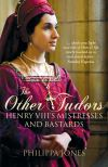 Jacket Image For: Other Tudors