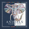 Animals Night Day Colouring Book