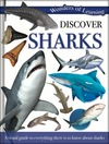 Discover sharks