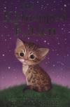 The kidnapped kitten