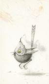 Shaun Tan Notebook - Bee Eater