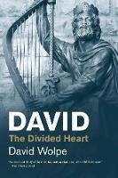 """David"" by David Wolpe"