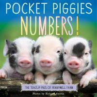 Jacket image for Pocket Piggies Numbers!