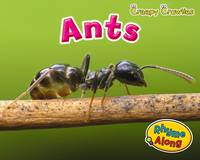 Jacket image for Ants