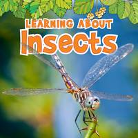 Jacket image for Learning About Insects