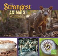 Jacket image for The Strangest Animals in the World