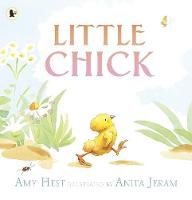 Jacket image for Little Chick
