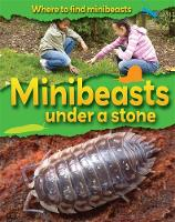 Jacket image for Minibeasts Under a Stone