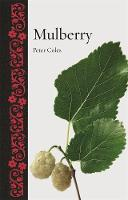 Jacket Image For Mulberry