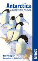 Jacket image for Antarctica: A Guide to the Wildlife