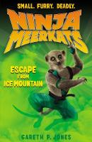 Jacket image for The Escape from Ice Mountain