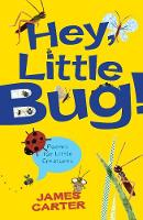 Jacket image for Hey Little Bug