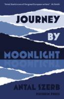 Jacket image for Journey by Moonlight