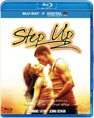 Step Up 2006 BluRay 480p 300MB Dual Audio ( Hindi – English ) MKV
