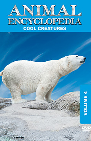 Animal Encyclopedia: Volume 4 - Cool Creatures (2012) (Retail / Rental)