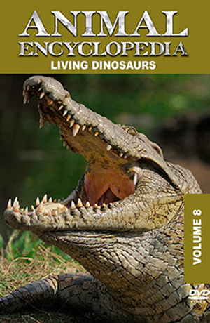 Animal Encyclopedia: Volume 8 - Living Dinosaurs (2012) (Retail / Rental)