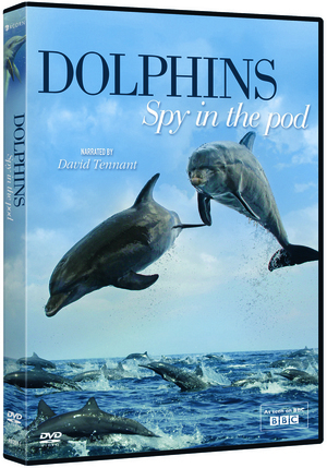 Dolphins: Spy in the Pod (Retail / Rental)