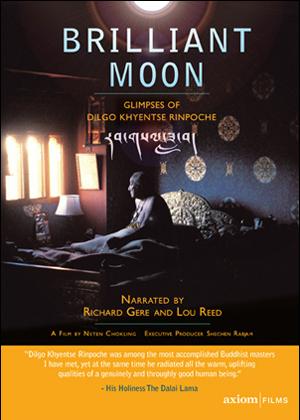 Brilliant Moon (2010) (Retail / Rental)
