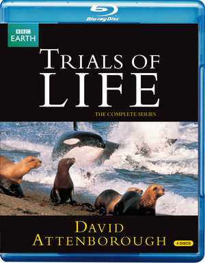 David Attenborough: Trials of Life - The Complete Series (1990) (Blu-ray) (Retail / Rental)