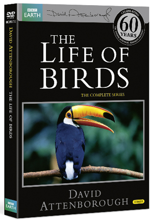 David Attenborough: The Life of Birds - The Complete Series (1998) (Retail / Rental)