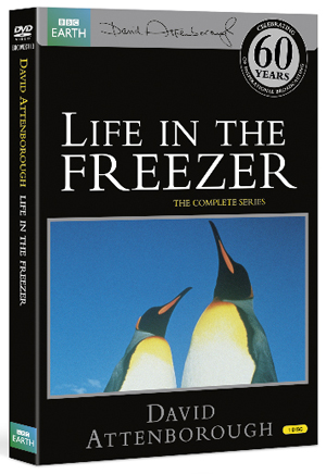 David Attenborough: Life in the Freezer - The Complete Series (1994) (Retail / Rental)