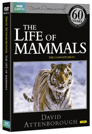 David Attenborough: The Life of Mammals - The Complete Series (2002) (Retail / Rental)
