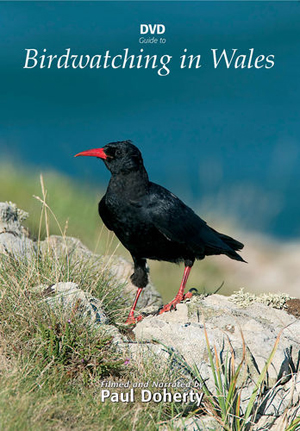 Birdwatching in Wales (2012) (Retail Only)