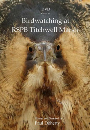 Birdwatching at RSPB Titchwell Marsh (Retail Only)