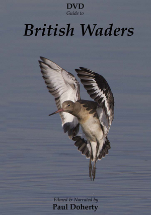 British Waders (Retail Only)