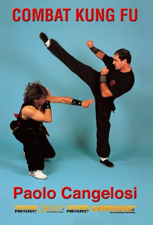 Combat Kung Fu (Retail / Rental)