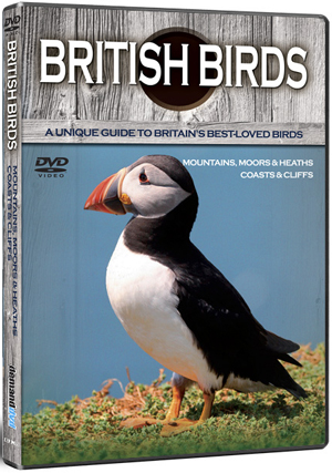 British Birds: Mountains, Moors, Heaths, Coasts and Cliffs (Retail / Rental)