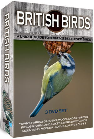 British Birds: Collection (Box Set) (Retail / Rental)