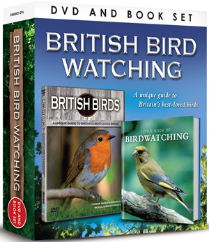 British Birds: Towns, Parks, Gardens, Woodlands and Forests (with Book) (Retail Only)