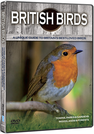 British Birds: Towns, Parks, Gardens, Woodlands and Forests (Deleted)