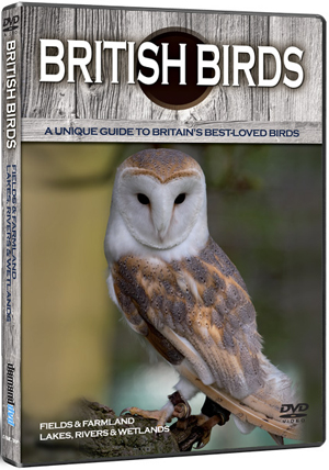 British Birds: Fields, Farmland, Lakes, Rivers and Wetlands (Deleted)