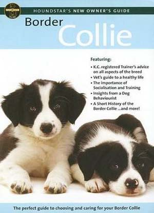 Border Collie: Care Guide (Deleted)