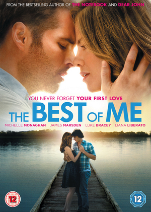 The Best of Me (2014) (Retail / Rental)